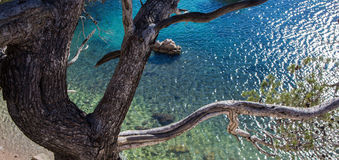 Morgiou Marselha Fotografia de Stock Royalty Free