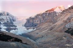 Morgon av Icefield och glaciärer Arkivfoto