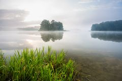 Morgon dimmig sjö Royaltyfri Fotografi