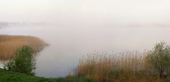 Morgon dimmig sjö Arkivfoton