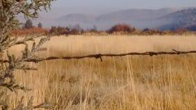 Morgon för hög öken för höstdimma frostig arkivfoton