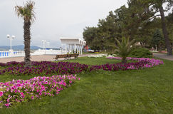 Morgon för tidigare sommar på promenaden av semesterorten Gelendzhik royaltyfria foton