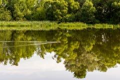 Morgon flod, skönhet Royaltyfria Foton