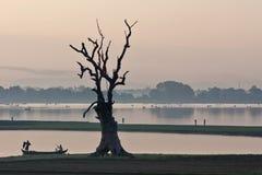 Morgon i Amarapura, Myanmar Royaltyfri Bild