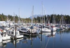 Morgon i den Vancouver marina royaltyfri foto