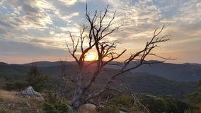 Morgon i Karandila, Stara planina royaltyfria foton