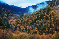 Morgon i rökiga berg - färgrika trees Royaltyfri Bild