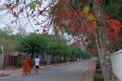 Morgon i Thailand Royaltyfri Fotografi