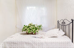 Morgon Jasmin blommar i en korg på en säng Royaltyfri Bild