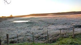Morgon med frost Royaltyfria Bilder