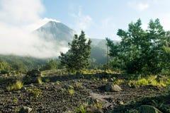 Morgon på berget royaltyfri foto