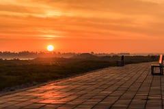 Morgon på en parkera nära den Khong floden i det Bueng Kan området, Th Royaltyfria Foton