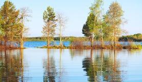 Morgon på en sjö Arkivbild
