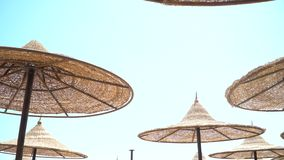 Morgon på en tropisk strand, den sandiga stranden med soldagdrivare och solparaplyer, slags solskydd och soldagdrivare på en sand lager videofilmer