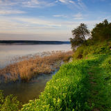 Morgon på floden Arkivfoton