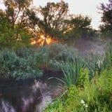 Morgon på floden Arkivbilder