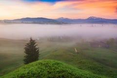 Morgon på kullar av den carpathian alpina byn royaltyfria bilder
