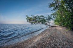 Morgon på kusten av en härlig sjö, landskap arkivbild