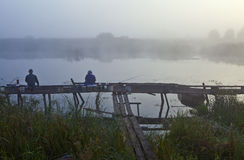 Morgon på laken Royaltyfri Bild