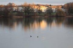 Morgon på laken germany wolfsburg arkivbild