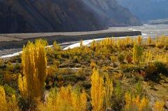 Morgon på Passu, nordliga Pakistan Royaltyfri Fotografi