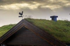 Morgon på platån, Norge Royaltyfria Bilder