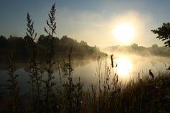 Morgon på Seim Royaltyfria Bilder