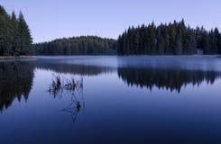 Morgon på sjön Fotografering för Bildbyråer