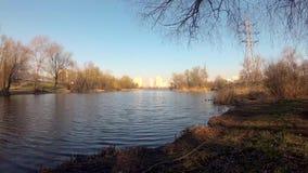 Morgon på sjön i staden på våren mot bakgrunden av ett höghus koppla av vid det lugna vattnet stock video