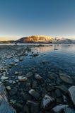 Morgon på sjön Tekapo Fotografering för Bildbyråer