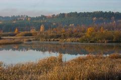 Morgon sjö på den frostiga hösten Arkivfoto
