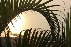 Morgon Sun Arkivfoton