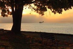 morgon vancouver för höstavvikelsefloatplane Royaltyfria Bilder