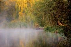 Morgon vid en flod Royaltyfri Foto