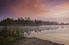 Morgon vid sjön Royaltyfri Fotografi