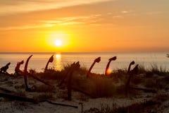 Morgonatmosfär på stranden med ankaren Arkivfoto