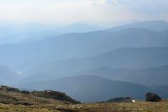 Morgondimma i de Carpathian bergen Fotografering för Bildbyråer