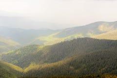 Morgondimma i de Carpathian bergen Morgondimma i Carpathians Skogräkningslutningar Arkivbilder