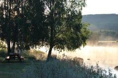 Morgondimma ovanför en liten flod i bygden av Norge, Europa Arkivbild