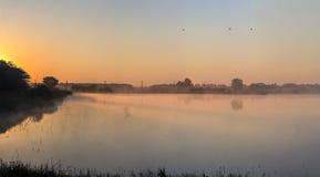 Morgondimma på en sjö i ljus av den guld- solen Arkivbild