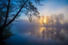 Morgondimma på en skogflod Fotografering för Bildbyråer