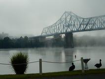Morgondimma på Russellen, Kentucky bro på Ohioet River Royaltyfri Fotografi