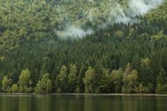Morgondimma på bergsjön Arkivfoto