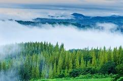 Morgondimman Mountain View i Thailand Arkivfoto