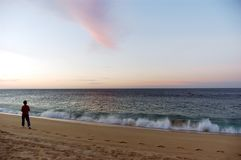 Morgonen driver går på stranden royaltyfria bilder