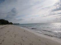 Morgonen går på stranden royaltyfria bilder