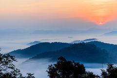 Morgonen i misten av vintern i den Phu bo biten, Loei Thailand royaltyfria bilder