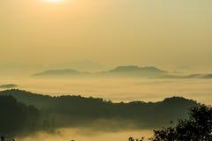 Morgonen i misten av vintern i den Phu bo biten, Loei Thailand royaltyfri bild