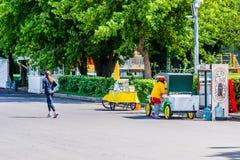 Morgonen i Moskva Gorky parkerar Royaltyfria Bilder