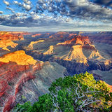 Morgonen tänder på grandet Canyon Royaltyfri Bild